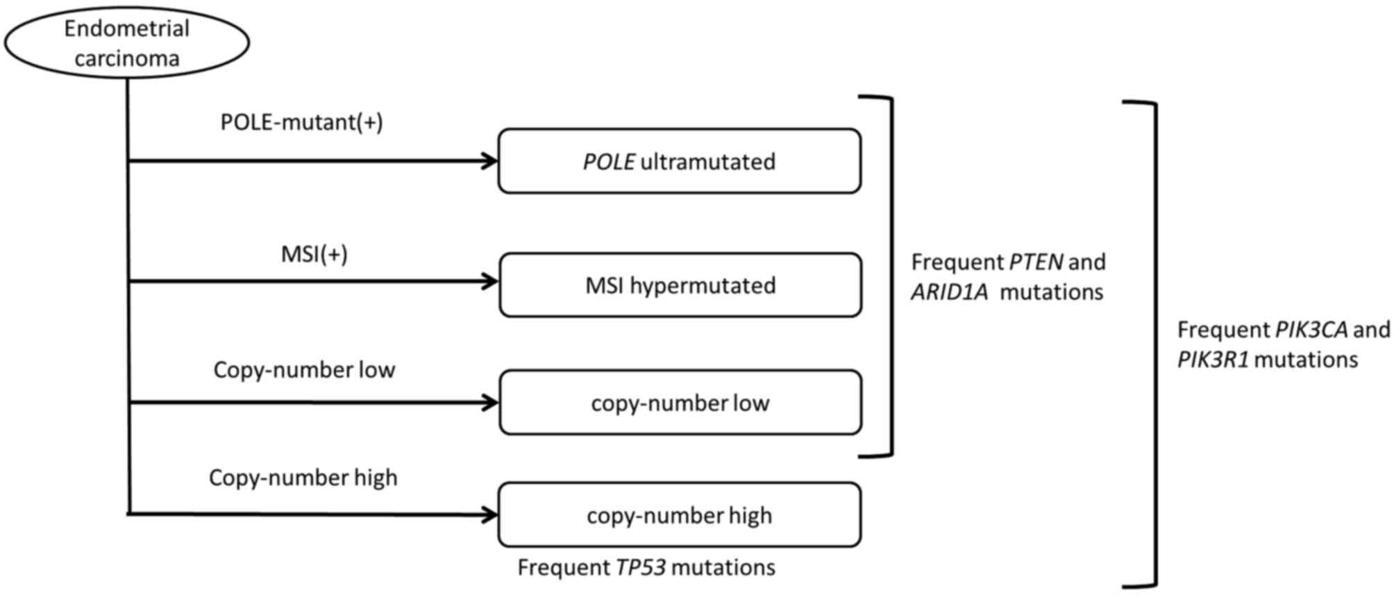 Cancer colorectal non-polipozic ereditar tip 2 (HNPCC) – mutaţii MLH1 | Synevo