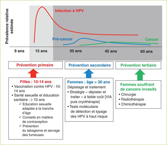 hpv femme vaccin)