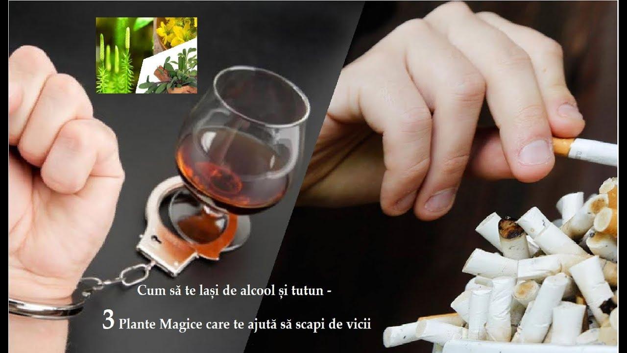 detoxifiere de alcool)