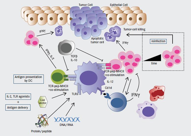 human papillomavirus and lung cancer)
