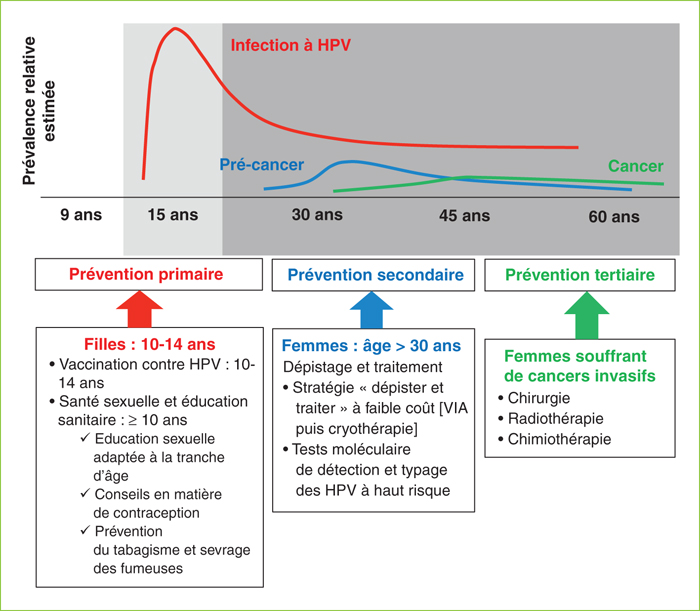papillomavirus et cancer col uterus)