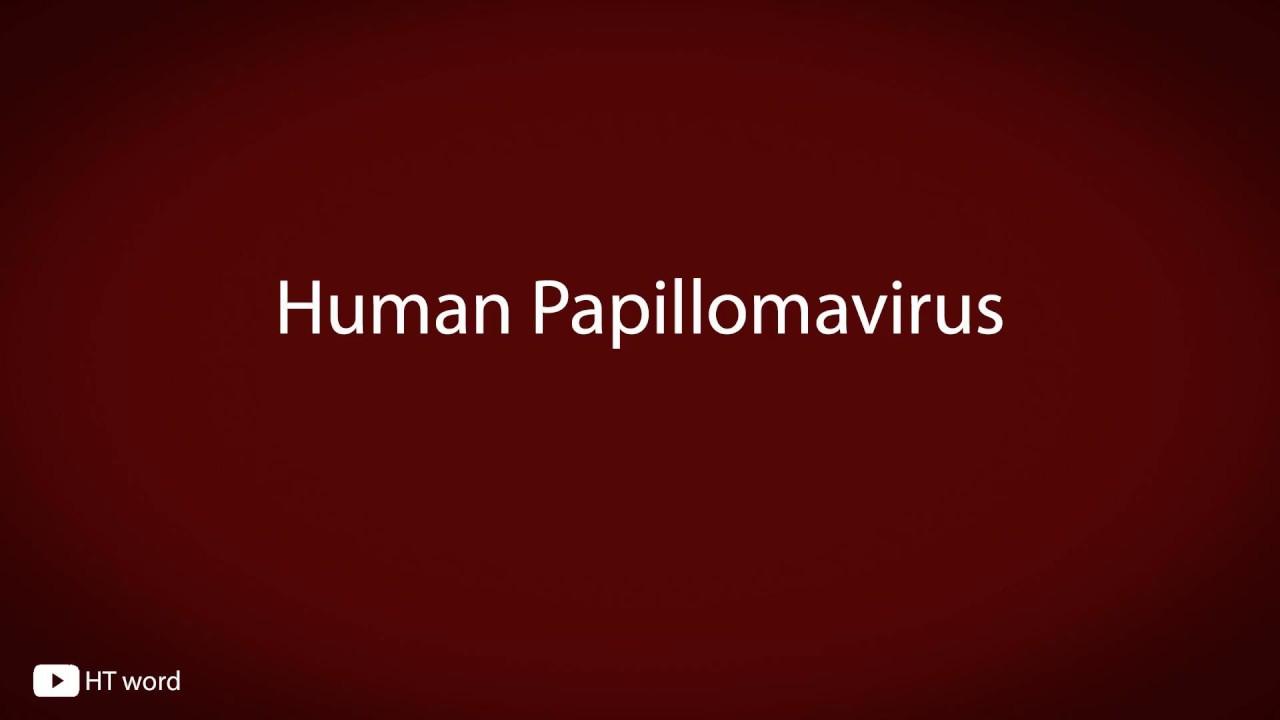 PAPANICOLAOU TEST - Definiția și sinonimele Papanicolaou test în dicționarul Engleză