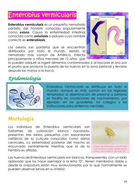 enterobius vermicularis donde se encuentra detoxifiere organismului farmacie