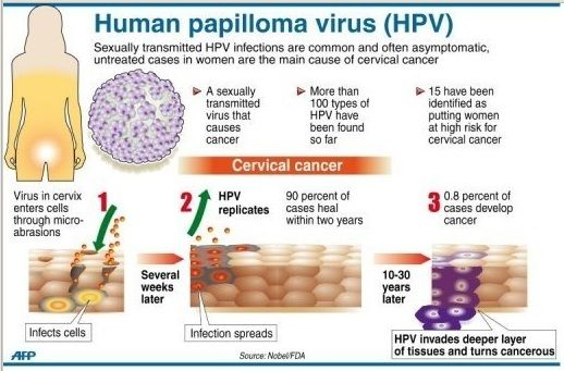 hpv causes cancers)