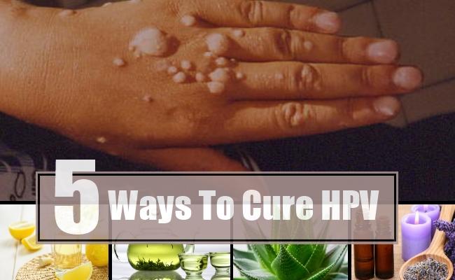 herbal treatment of human papillomavirus