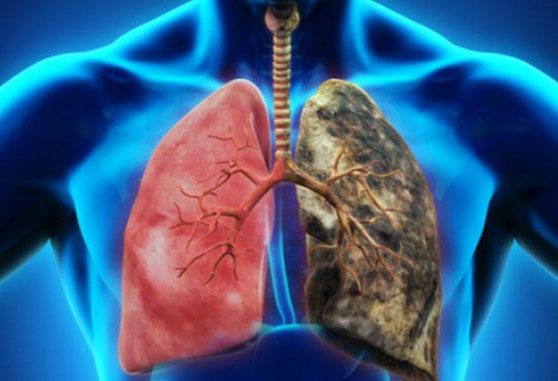 papillomavirus fertilite warts and throat cancer