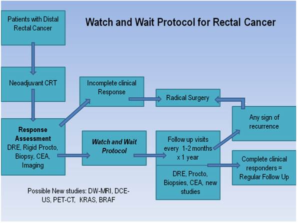 rectal cancer watch and wait brazil)