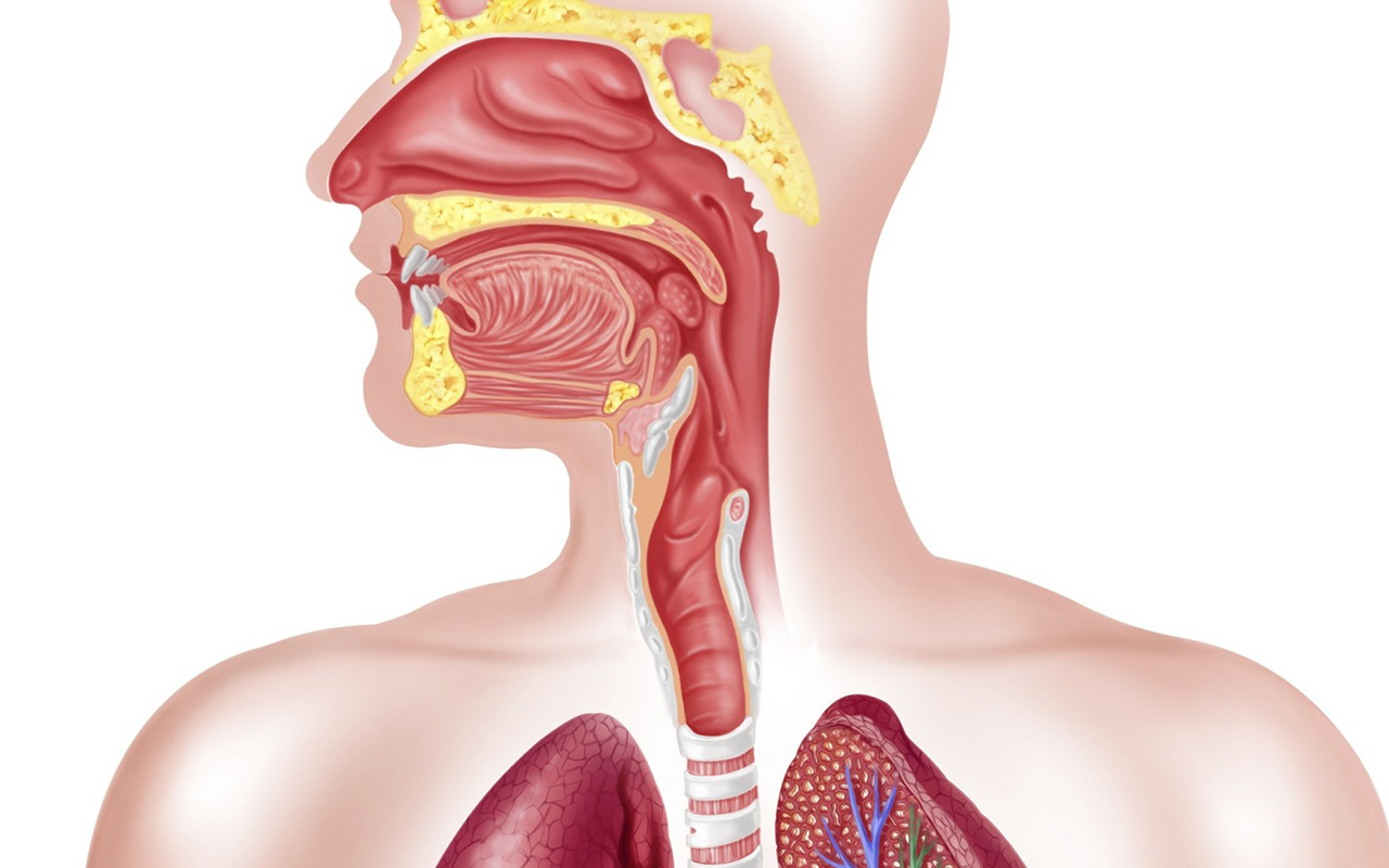 Cancerul esofagian - asspub.ro