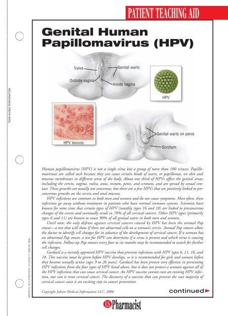 hpv manual genital papilloma virus vaccino ragazzi