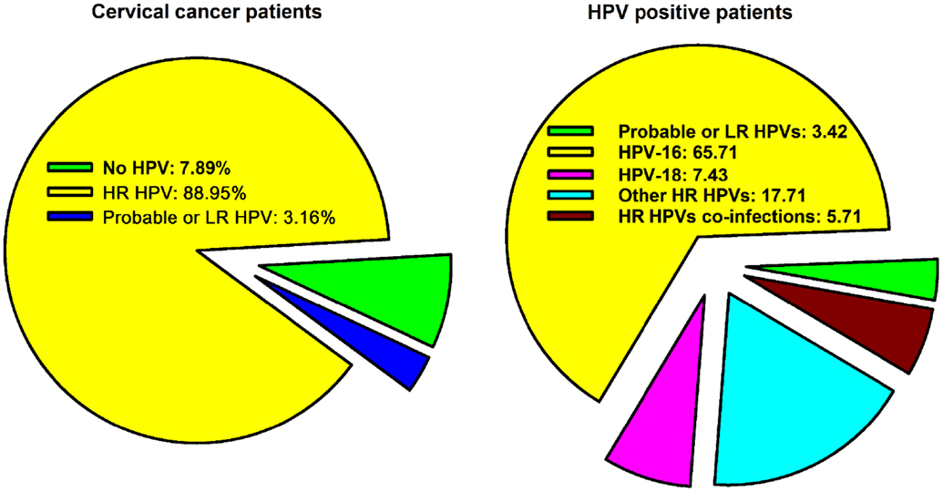 cervical cancer with hpv positive)