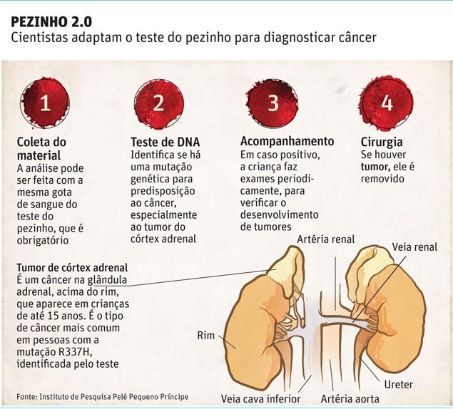 cancer renal genetica
