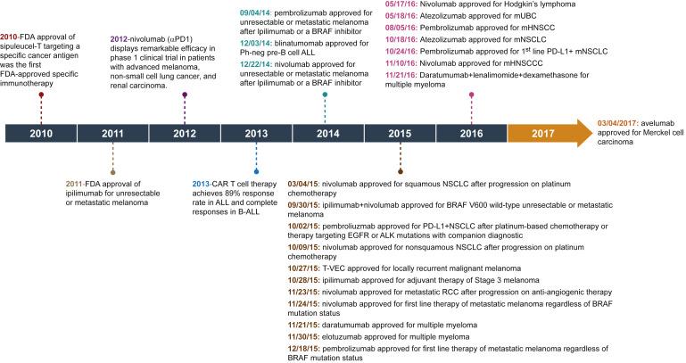 Imunoterapia în cancer: mecanismele imunologice şi rolul lor în terapie