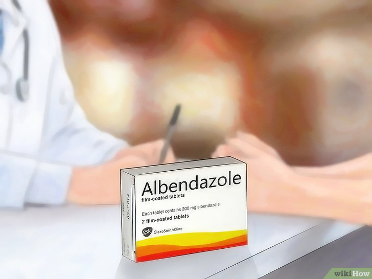 Рубрика: Antecedente de boala de salmoneloza pediatrica