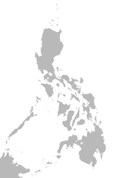 schistosomiasis philippines 2019)