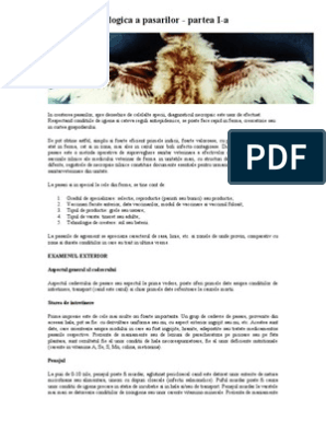 parazitozele pasarilor)