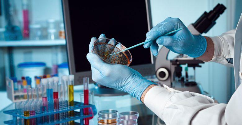 papillomavirus cura farmacologica)