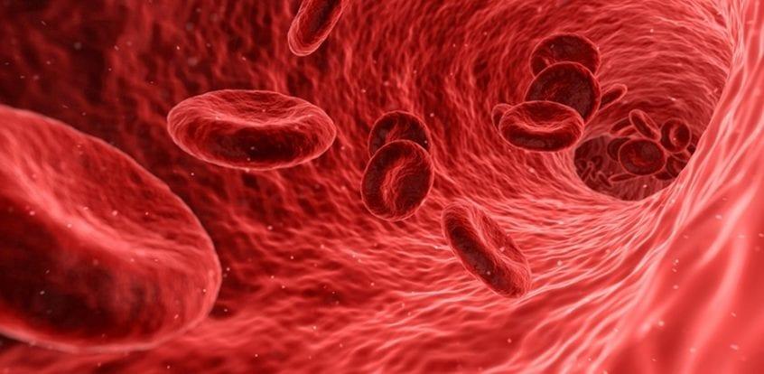 cancer sange cauze