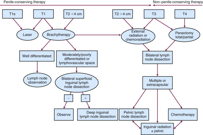 hiv and penile cancer)