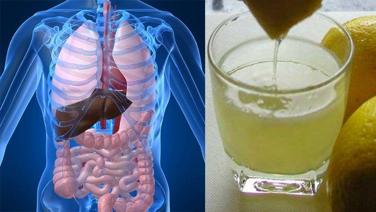 detoxifierea ficatului de grasimi)