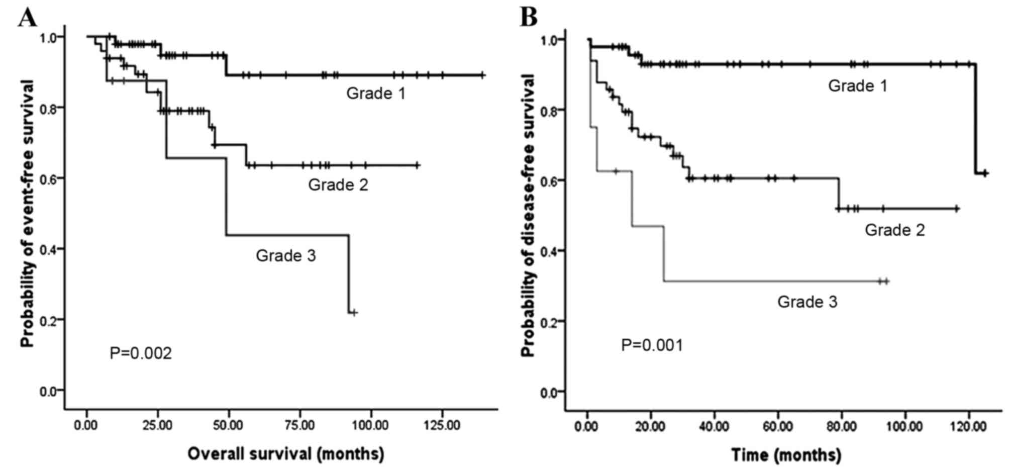 neuroendocrine cancer in liver survival rate)