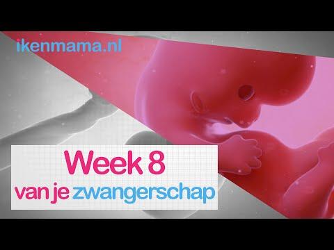 8 weken zwanger en diarree ovarian cancer jokes