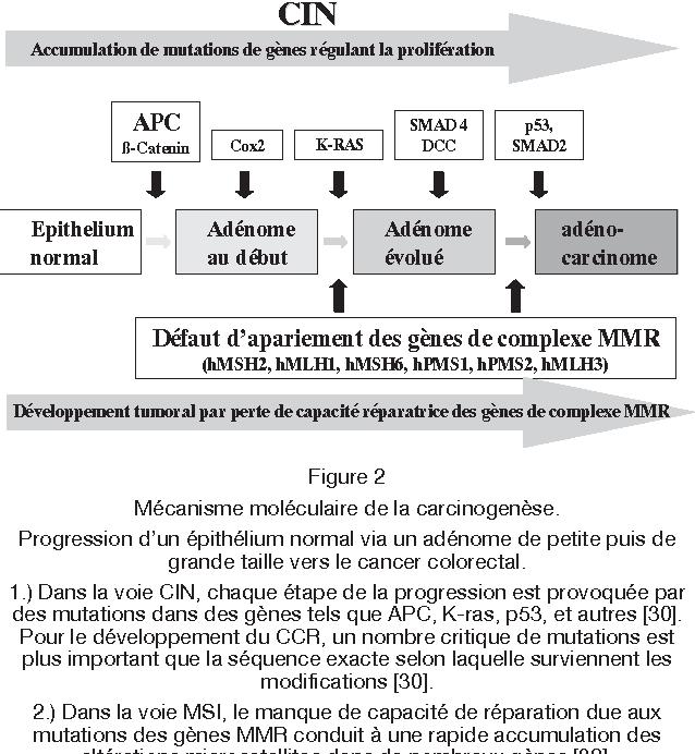 le traitement des patients atteints - Traducere în română - exemple în franceză | Reverso Context