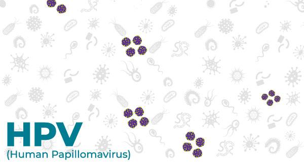 que es human papillomavirus