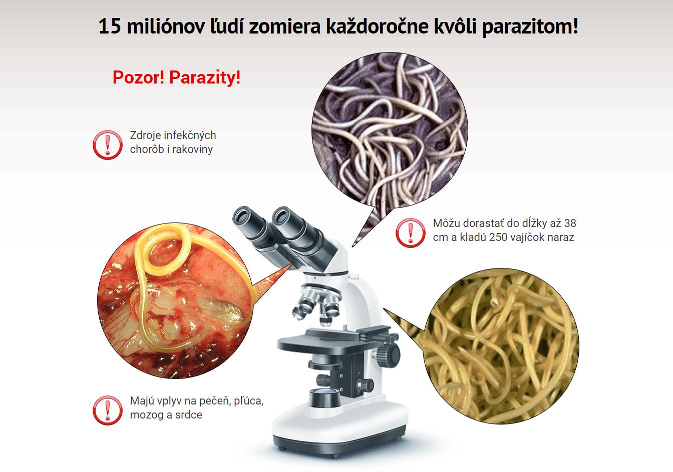 co sposobuju parazity v tele)