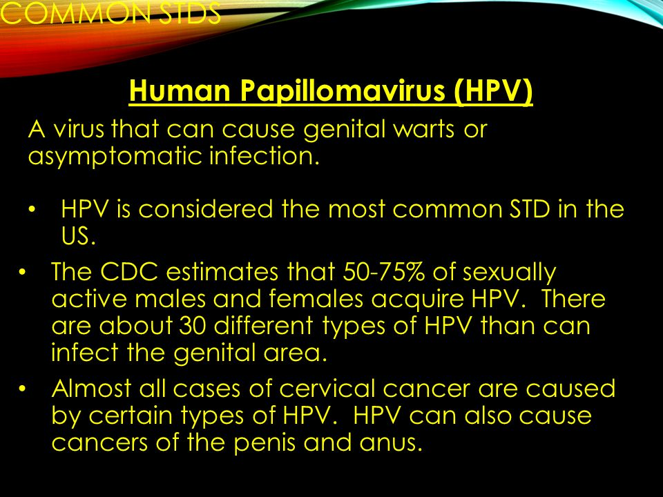 hpv (human papillomavirus) accounts for the majority of prevalent stds in the us)