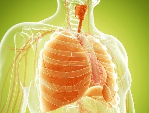 La cât timp după ce te laşi de fumat se curăţă plămânii de tutun