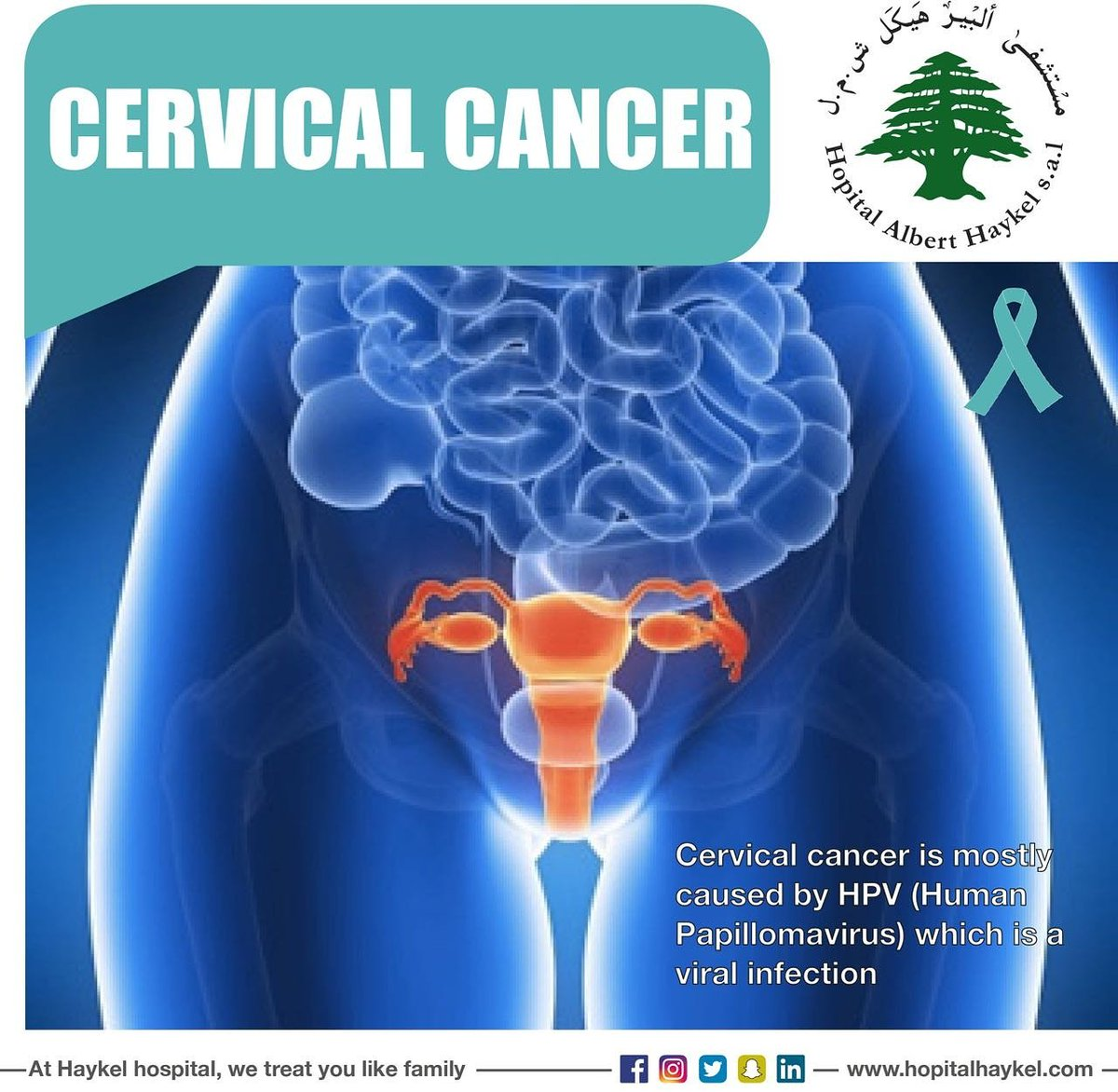 does hpv cause bone cancer)