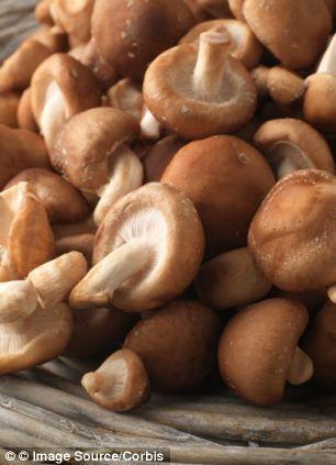 hpv cure mushroom)