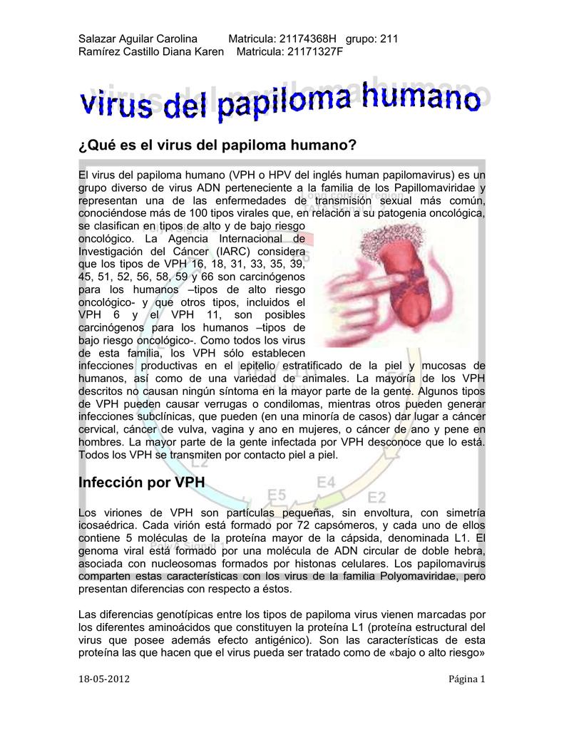 virus del papiloma humano caracteristicas del virus cancer mamar in situ