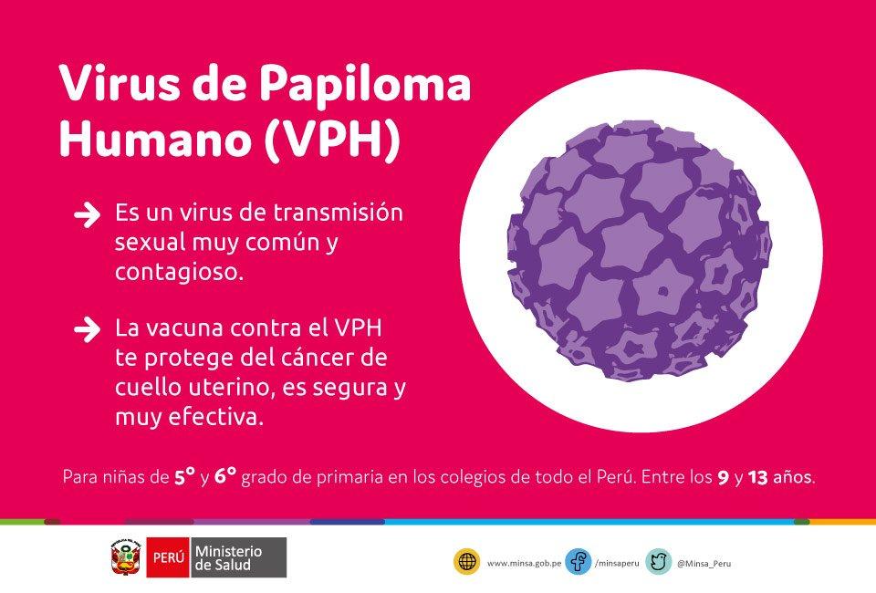 papiloma virus humano minsa