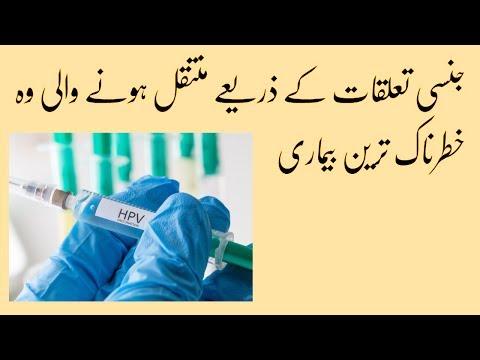 papilloma mean urdu)