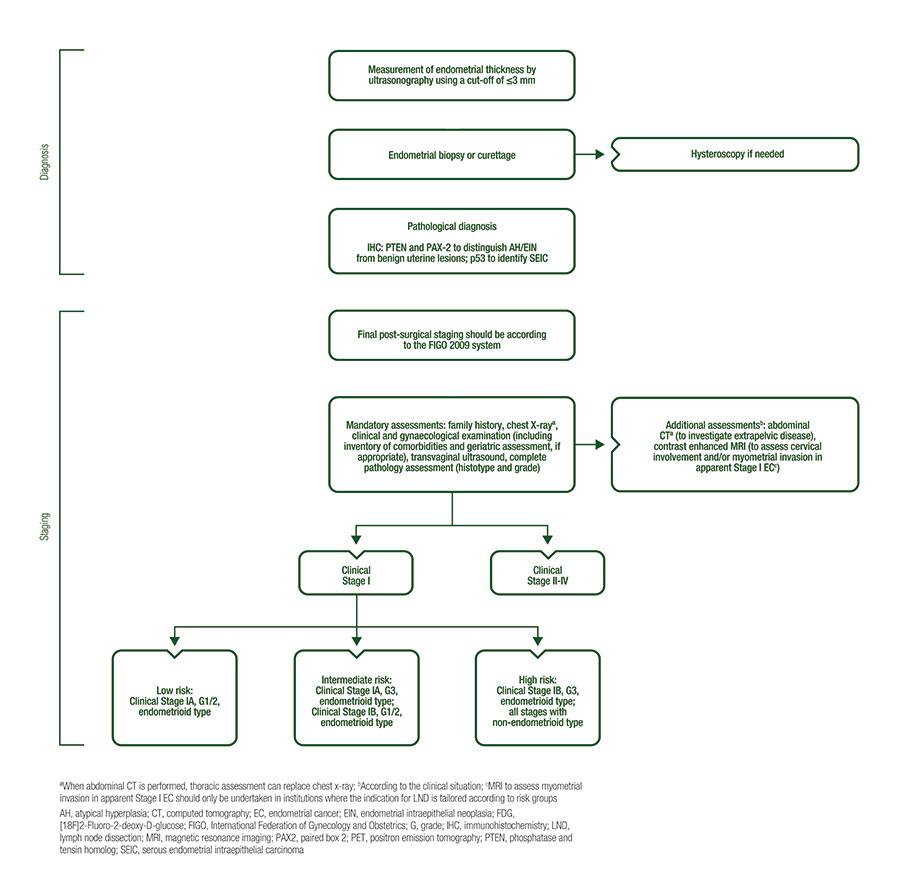 endometrial cancer diagnostic tests)