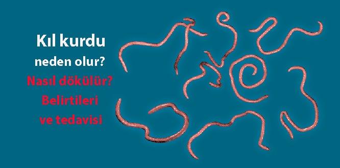 enterobius vermicularis neden olur)