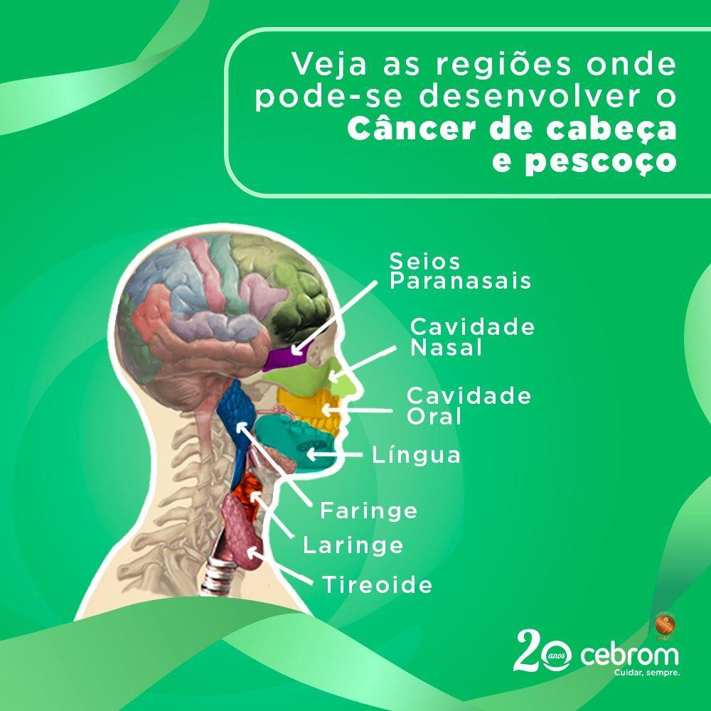 cancer laringe inca papillon zeugma renovat