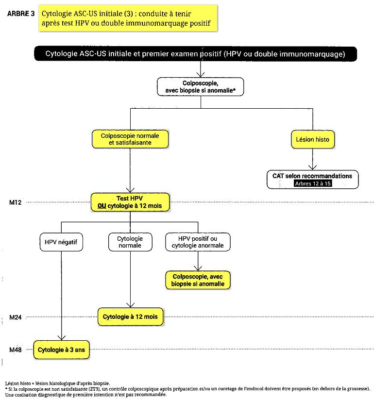 anomalie frottis papillomavirus)