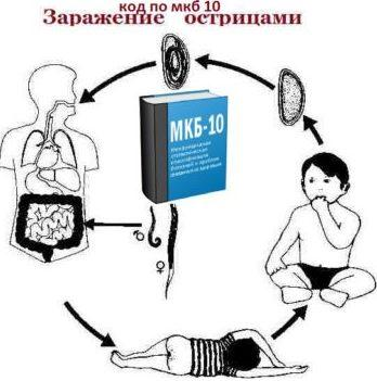enterobiasis icd 10)