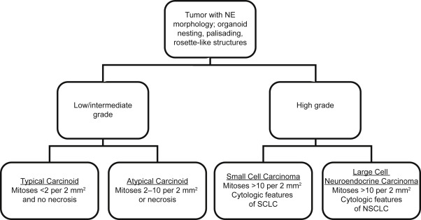 neuroendocrine cancer types)