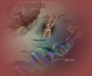tipuri cancer genetice)