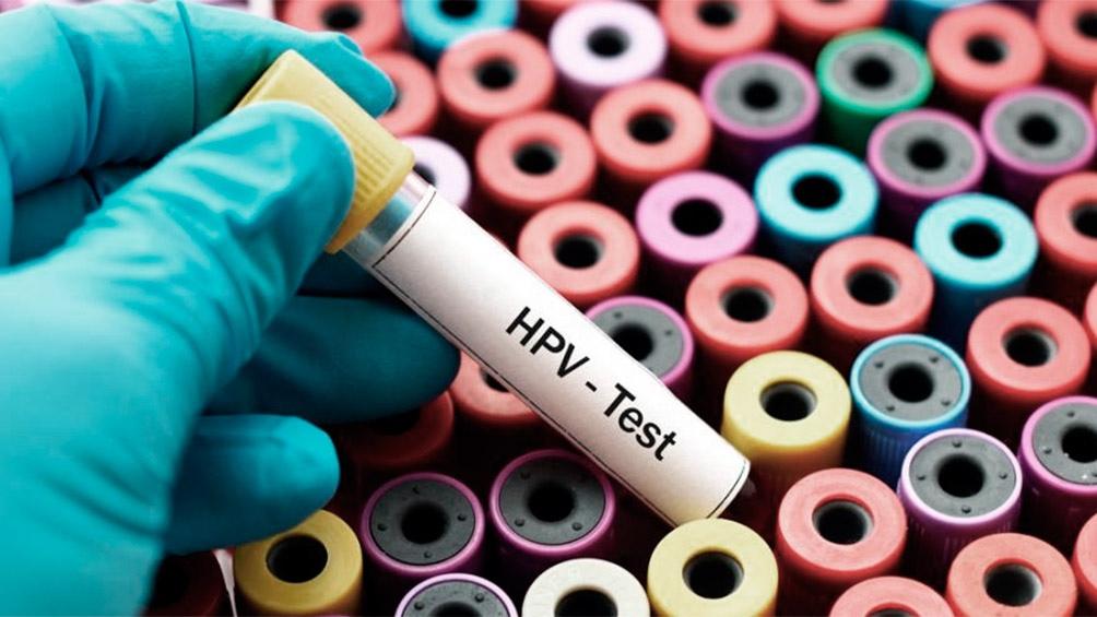 hpv papillomavirus papilloma)