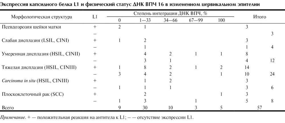 papilloma virus genotipo 53