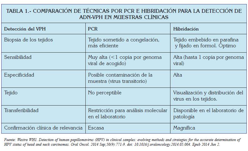 el virus del papiloma humano caracteristicas