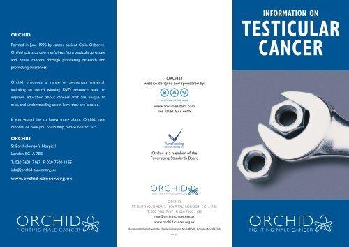 testicular cancer website