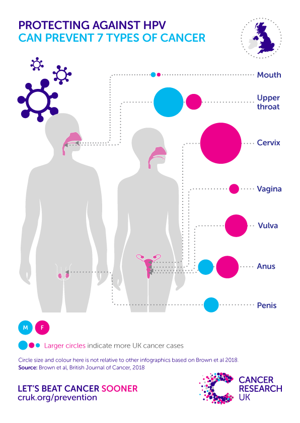 cancer from hpv in males)