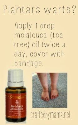 foot wart essential oil)
