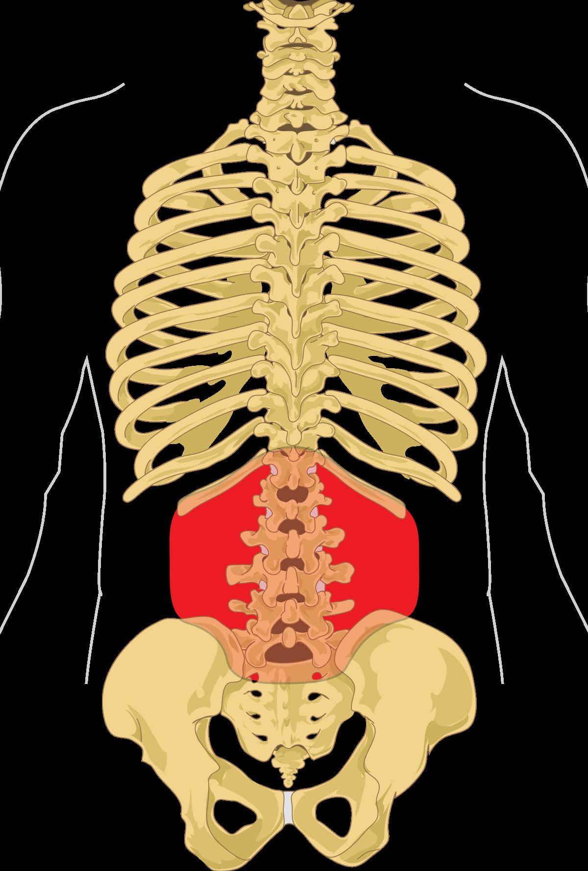 uterine cancer lower back pain)