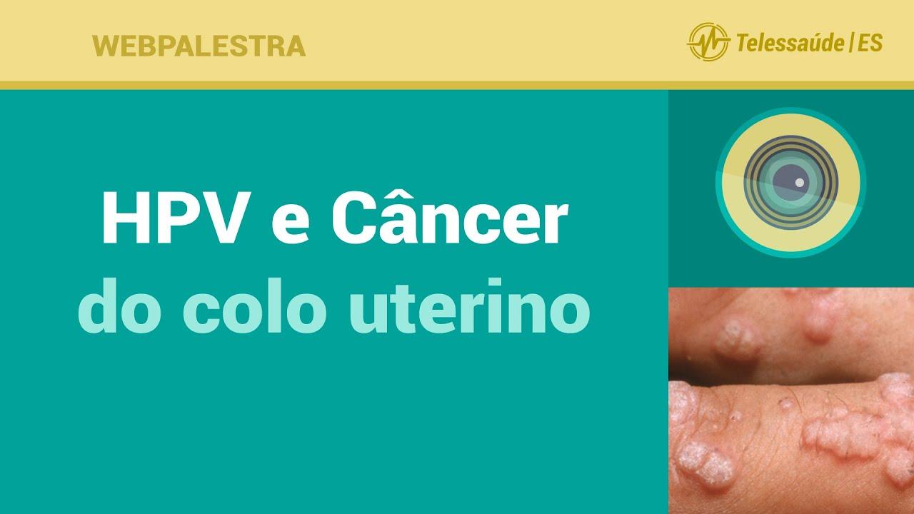 relacao entre hpv e cancer de colo de utero